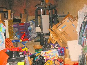 Basement, before professional organization